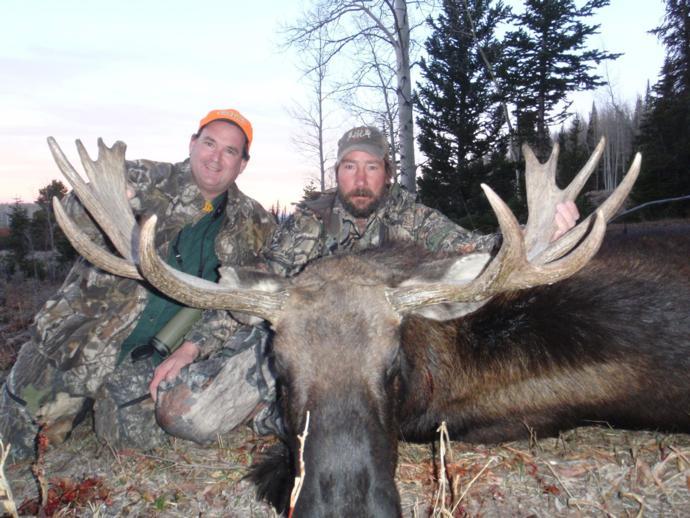 guiding a non resident for moose in alberta